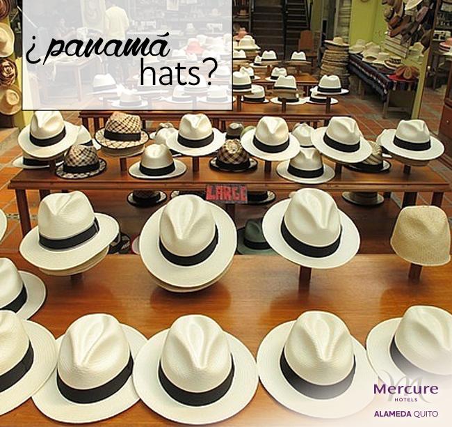 HATS MERCURE 2016. ¿Sabía usted que el verdadero sombrero de paja toquilla  es elaborado en el Ecuador  d270fa3d8cc